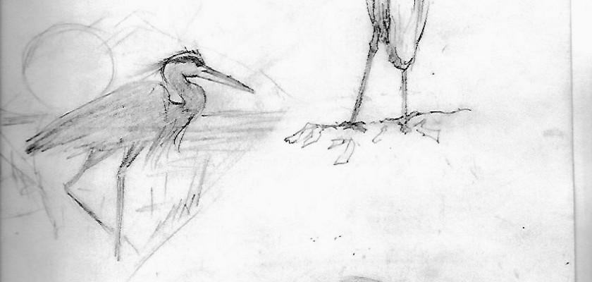 Dan Morris Drawings